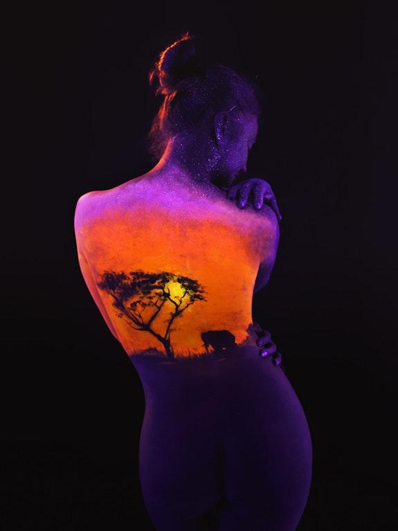 Safari. Body Light Concept Body Light Concept