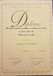 Grand prix du salon du 42eme salon régional des armées Sud Sud-Est. Forangeart F. Baldinotti Peintre De l'air