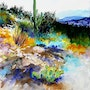 High Desert Scene in Tucson, Arizona. Art Retreat