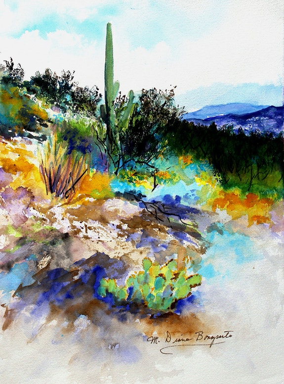 High Desert Scene in Tucson, Arizona. M Diane Bonaparte Art Retreat
