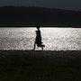 L'ombre du lac. Gérard Vouillon