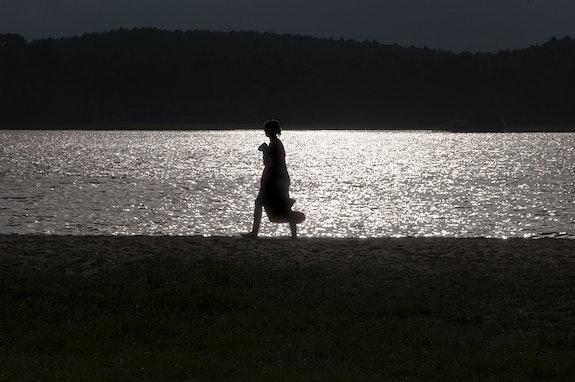 L'ombre du lac. Gérard Vouillon Gérard Vouillon