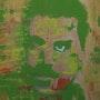 In Shades Of Green. Crina Iancau