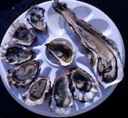 Les perles marines au citron. Elie