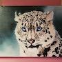 Tableau acrylique « Panthère des neiges » (n° 54). Acr.. Acrtoiles