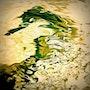 Le dragon vert. A'm