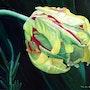Dawn, parrot tulip oil painting. Lily Van Bienen