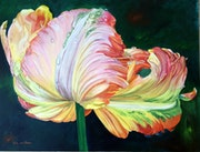A Flaming Parrot Tulip oil painting.