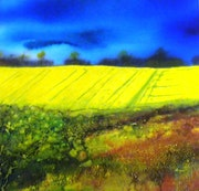 Summer fields. Patricia Lane