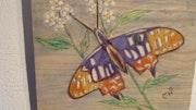 Papillon exotique.