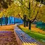 Herbststimmung am See. Frank Zinnemann