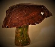 Ceramic Fungi (Marbas).