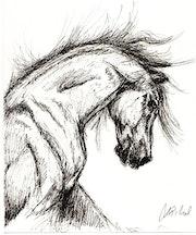 Brahma, a Horse Tale. Sarah Mi Illustration