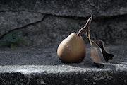 Une poire sur un mur. Ernest Tosetti