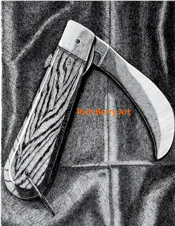Hawk Beak Knife in pen and ink. Rich Berry Rich Berry