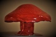 Ceramic Fungi (Botis).