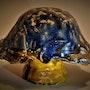 Ceramic Fungi (Camio). Straiph Wilson