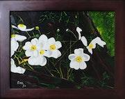 White Flowers on Tree Trunk. Frans Geerlings