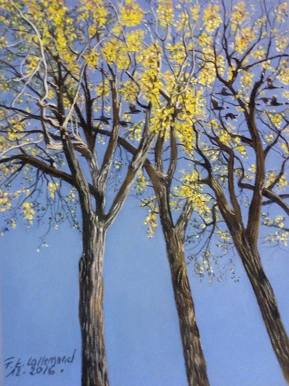 L'automne dans les hauts arbres de l'Avenue Van Horne à Montréal.. Françoise-Elisabeth Lallemand Françoise-Elisabeth Lallemand