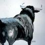 Le taureau magnifique.