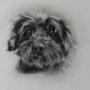 Petit chien. Thérèse Hutin