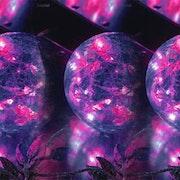 Boules décoratives. Marie Carteron
