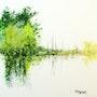 Paysage d'eau 2. Patrice Manuel