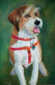 Jack Russell Terrier Pastel.
