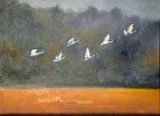White Geese in Flight - Northern Eastern Shore.