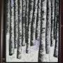 Forêt de bouleaux en hiver. Snyder