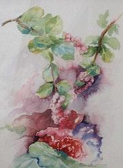 Les baies roses.. Aqualine45