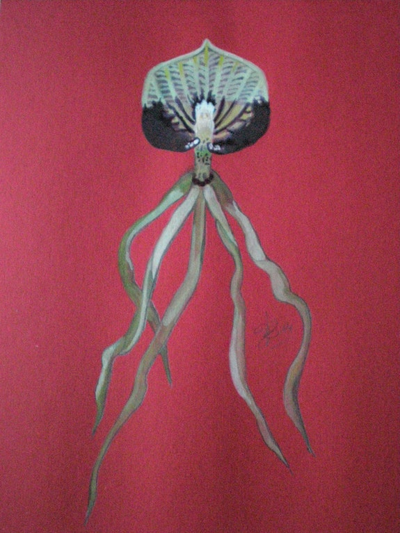 Orchidée 3. Leleu B. Brigitte Leleu