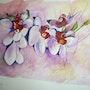 Orchidées Jolies. Brigitte Leleu