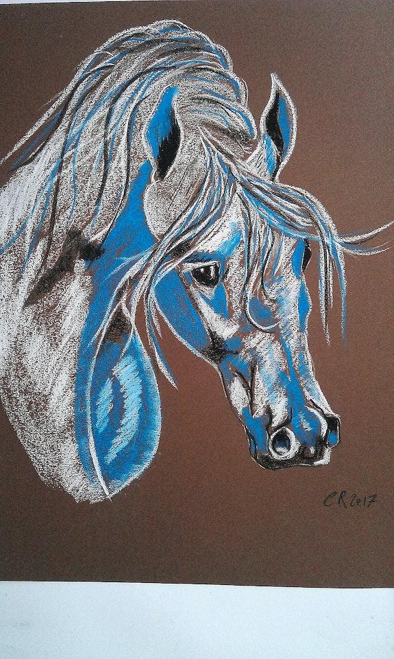 Cheval arabe. Chantal Rousseau Fantou16