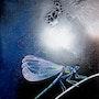 Le souffle de la libellule. Isabelle Le Pors