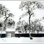 Neige sur le temple Meiji -Maï. Maï Laffargue