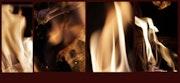 Girls of fire / Les Filles du Feu, Eros II. Olga Voscannelli