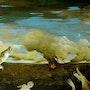 Bird and procreation 2001 - www.camilbofill.com. Camil Bofill
