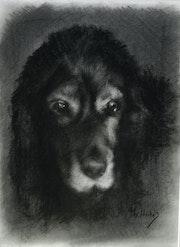 Maya, souvenir du dernier regard. Thérèse Hutin