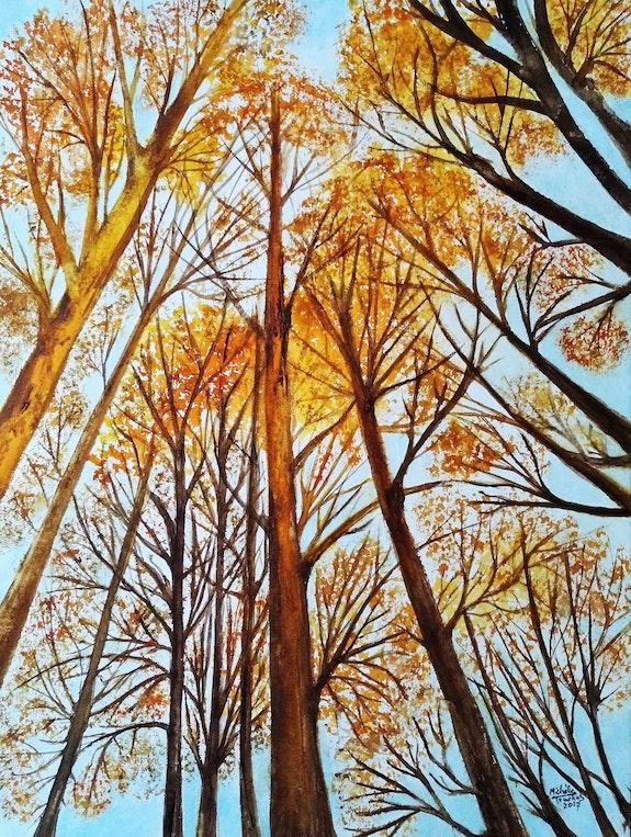 Promenade dans les bois. Michèle Truchot Mimi
