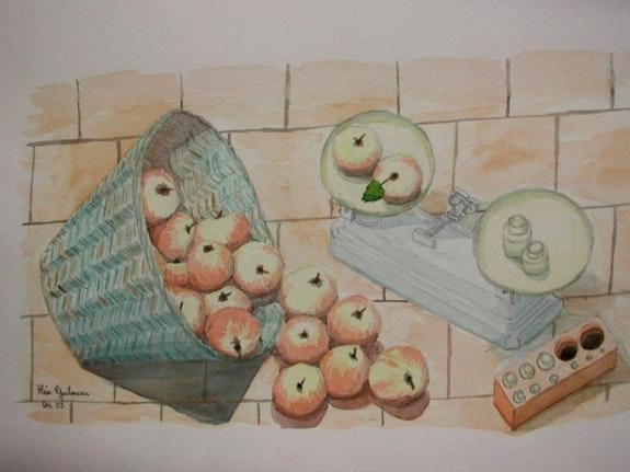 Aquarelle originale - corbeille de pommes - signee du peintre. Alain Guilmeau Mauguil
