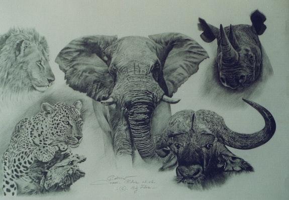 Étude d'animaux d'Afrique. Jean Camoin Jean Camoin