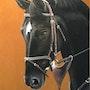 Le portrait. Pastel & Peinture Moser