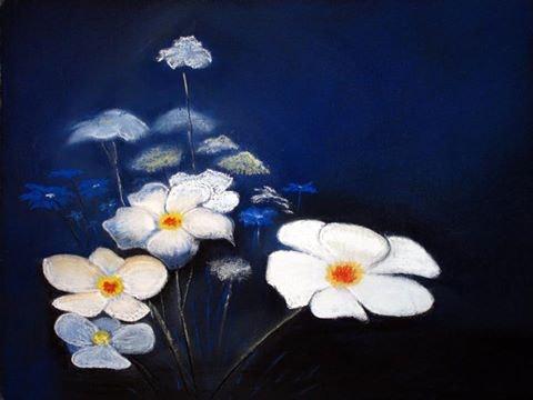 Fleurs nocturne. Pirschel R. Pitaro
