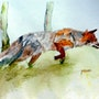 Le renard a l'affut. Yokozaza