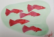 Red fish. Annavladigogoli