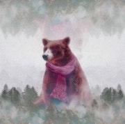 Ours frileux dans la brume. Marie Carteron