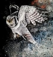 L'Oiseau de Silfax. Isabelle Le Pors