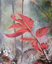 Red Leaves in Morning Mist. Michela Curtis