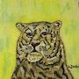 Tigre. Gilles Duguet